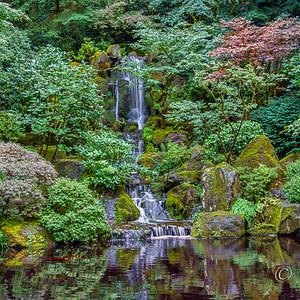 Waterfall among green foliage