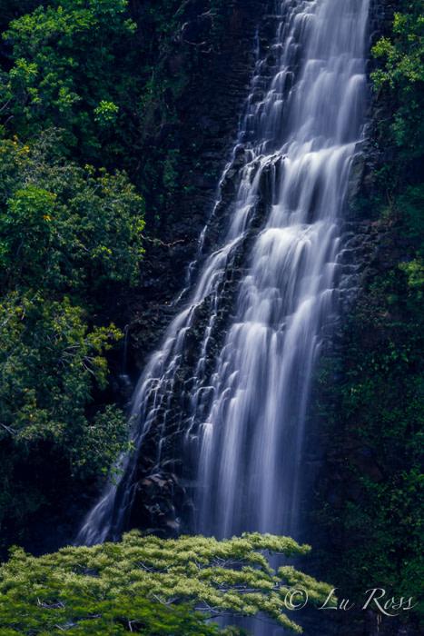 Waterfall in Kauai