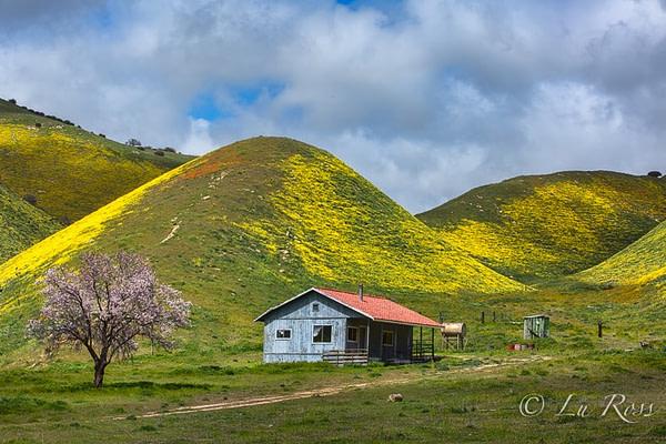 Carrizo Plain, California